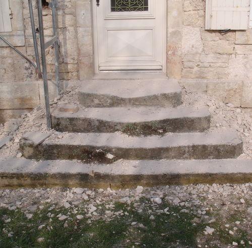 Fa ade en pierre menu les facadiers de pere en fils for Champignon facade maison